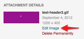 Add New Post ‹ Test Site — WordPress.jpg
